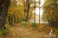 Herbstzauber - Foto