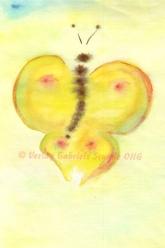 Schmetterling - Foto